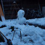 青年海外協力隊の帰国後 一人暮らしの実家に大雪が降る